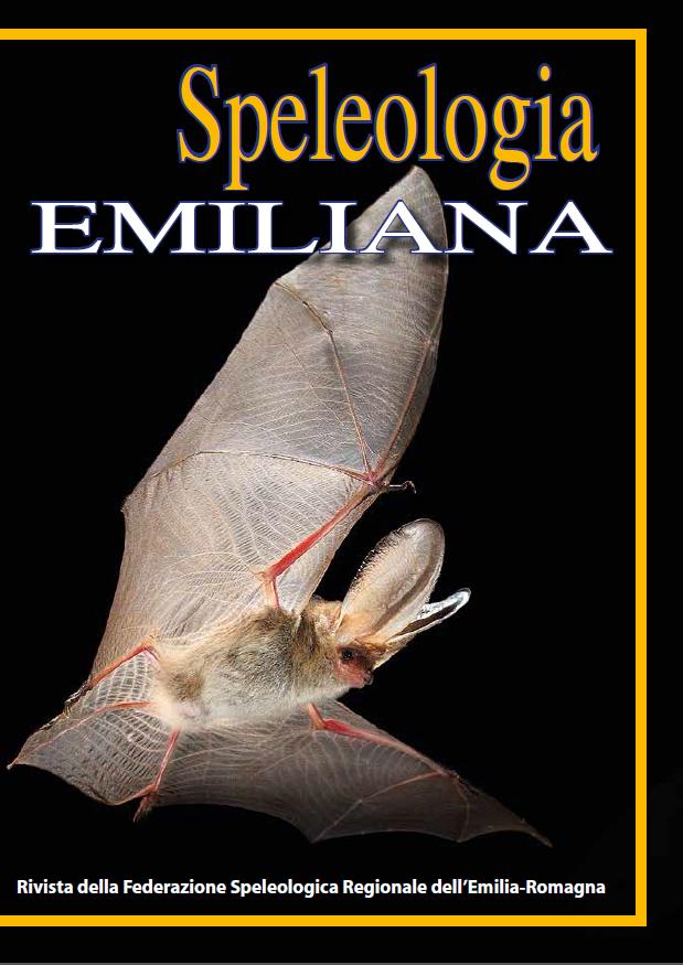 Speleologia Emiliana n° 4 - 2013